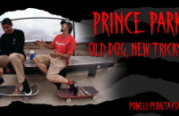 'Old Dog, New Tricks' - Prince Park