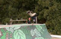 Powell-Peralta | Mini Ramp