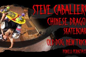 Caballero Chinese Dragon - 'Old Dog, New Tricks'