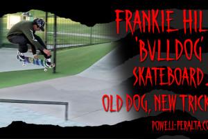 Frankie Hill Bulldog - 'Old Dog, New Tricks'