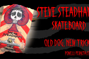'Old Dog, New Tricks' - Steave Steadham Skateboard