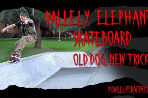 "'Old Dog, New Tricks' - Vallely ""Elephant"" Skateboard"