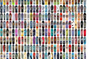 503 Skateboards