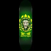 Powell Peralta Pro Salman Agah Lion Skateboard Deck - Shape 242 - 8 x 31.45