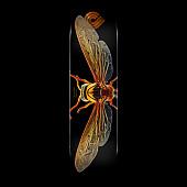 Powell Peralta BISS Potter Wasp Blem Skateboard Deck - 8 x 31.45