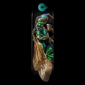 Powell Peralta BISS Cuckoo Bee Blem Skateboard Deck - 8 x 31.45