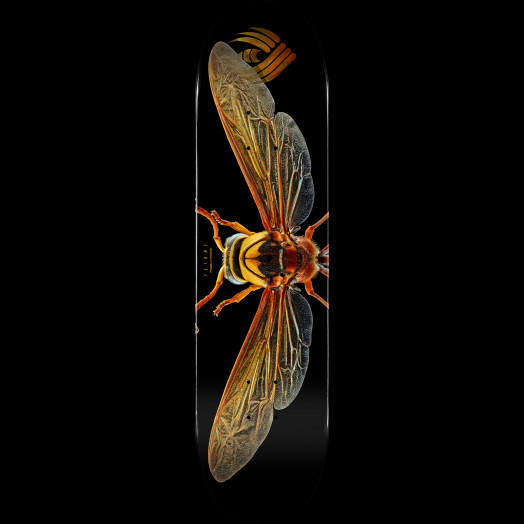 Powell Peralta Flight® Skateboard Deck BISS Potter Wasp - Shape 247 - 8 x 31.45