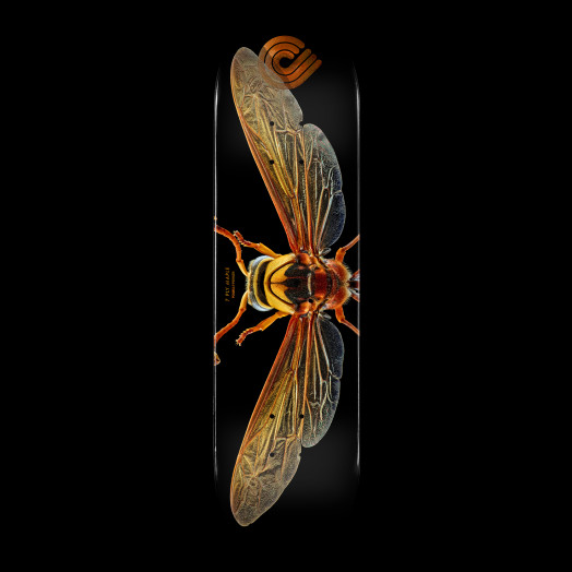 Powell Peralta BISS Potter Wasp Skateboard Deck - Shape 247 - 8 x 31.45